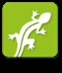 NIAG_Iguana