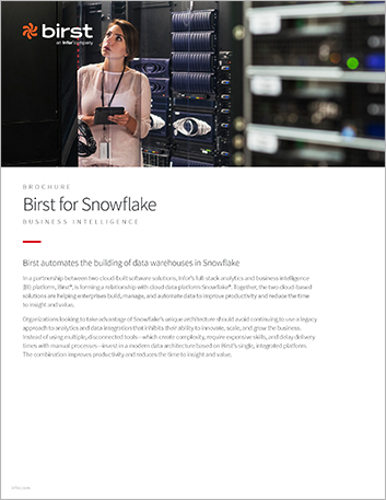 Th Birst for Snowflake Brochure English 457px