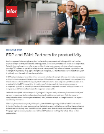 Th ERP and EAM Partners for productivity Executive Brief English 457px