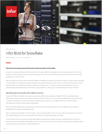 Th Infor Birst for Snowflake Brochure Czech 457px