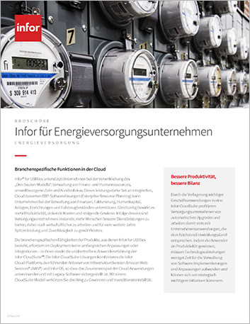 Th Infor for Utilities Brochure German 457px