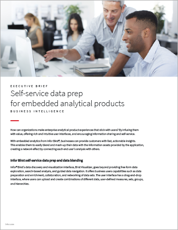 Th Self service data prep for embedded analytical products Executive Brief English 457px